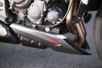 Triumph Street Triple RS 2020 - 49