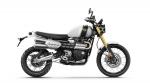 Triumph Scrambler 1200 - 2019 - 02