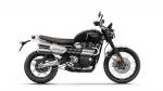 Triumph Scrambler 1200 - 2019 - 09